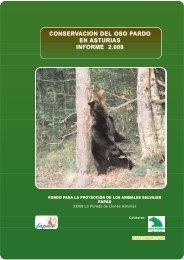 INFORME ACTIVIDADES 2008 Conservación del oso pardo ... - Fapas