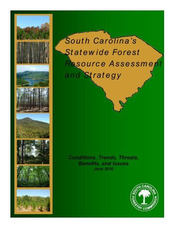 South Carolina's Statewide Forest Resource Assessment and Strategy