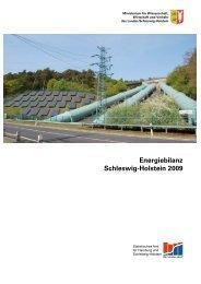 Energiebilanz Schleswig-Holstein 2009 - Statistikamt Nord