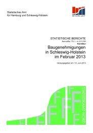 im Februar 2013 in Schleswig-Holstein ... - Statistikamt Nord