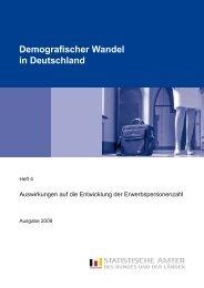 Demografischer Wandel in Deutschland, Heft 4 ... - Statistische Ämter