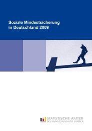 Soziale Mindestsicherung in Deutschland 2009 - Statistisches ...