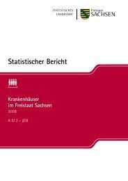 Statistischer Bericht A IV 2 - j/09 [Download,*.pdf, 0,24 MB] - Statistik ...
