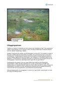 Brosjyre - Statkraft - Page 5