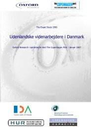 Udenlandske videnarbejdere i Danmark
