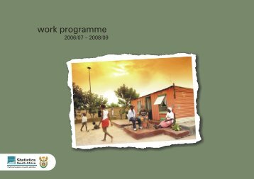 Work programme - Statistics South Africa