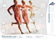 3B Scientific - Medizin Neuheiten