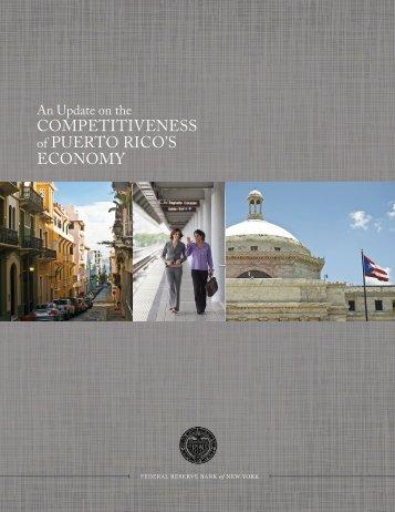 Puerto-Rico-Report-2014