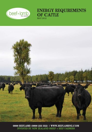 Energy requirements of cattle