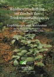 Waldbewirtschaftung - Enercity