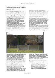 """Steenuilen """"beschermd"""" in Breda. - STeenuil Overleg NEderland"""