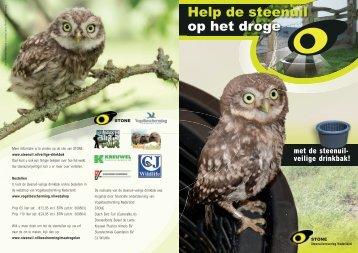Help de steenuil op het droge - STeenuil Overleg NEderland