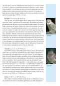 Uilen - STeenuil Overleg NEderland - Page 5