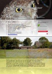 """Nieuwsbrief """"Uilenbescherming in Brabant"""" - STeenuil Overleg ..."""