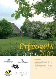 Erfvogel _1 - STeenuil Overleg NEderland