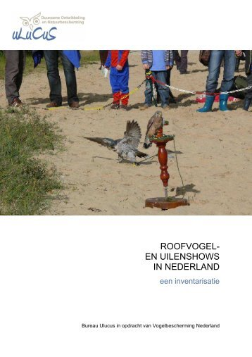 Roofvogel- en uilenshows in Nederland - Stichting Kerkuilen ...