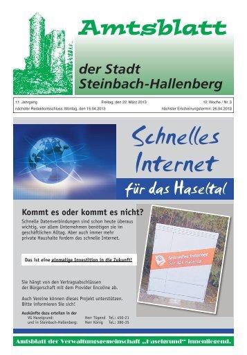 Amtsblatt der Stadt Steinbach-Hallenberg März 2013.pdf