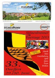 Steinenbronn Aktuell Nr. 26 vom 27. Juni 2013