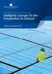 Intelligente Lösungen für den Energiesektor (PDF) - Steria