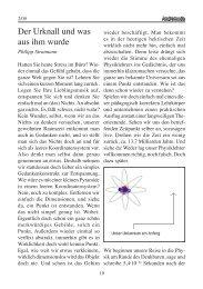 Der Urknall und was aus ihm wurde - Sternfreunde Münster