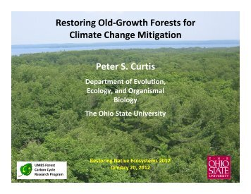 Restoring Old-Growth Forests for Climate Change Mitigation