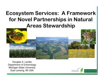 Ecosystem Services - Restoring Native Ecosystems