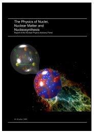 Nuclear Physics Advisory Panel (NPAP) report (PDF-3.8 MB) - STFC
