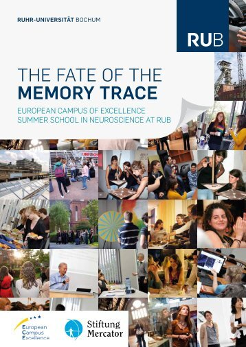 the fate of the memory trace - Biopsychology