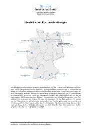 Mercator Forscherverbund Innovatives Soziales Handeln