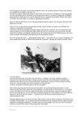 VII Feldbericht von der Westfront - DIE LINKE. Neuenhagen - Seite 5
