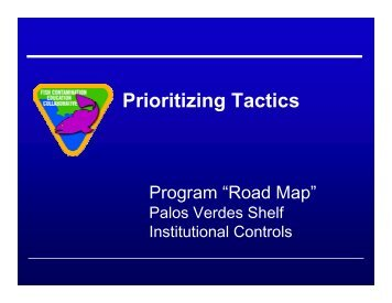 Strategic Planning Meeting Presentation: ICs Program Road Map