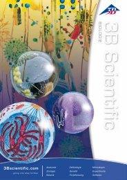 3B Scientific - Biologie Katalog
