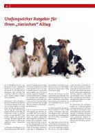 Tierisch gut vom Welpen zum Senior - Seite 2