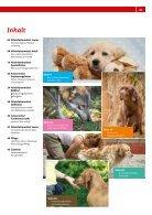 Tierisch gut vom Welpen zum Senior - Seite 3