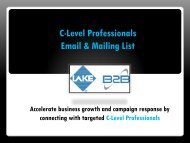C-Level Professionals Email List and Mailing Database