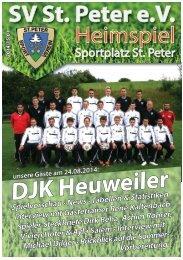 SVS-Heimspiel 2014/15-01
