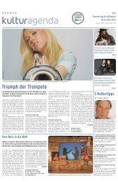 Berner Kulturagenda 2014 N°08