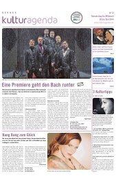 Berner Kulturagenda 2014 N°12