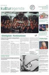 Berner Kulturagenda 2014 N°21
