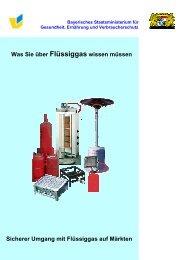 Was Sie über Flüssiggas wissen müssen - Bayern