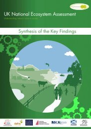 UK National Ecosystem Assessment - synthesis report
