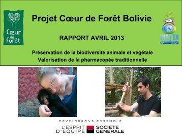 Rapport d'étape - Coeur de Forêt Bolivie - avril 2013