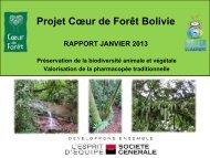 Rapport d'étape - Coeur de Forêt Bolivie - janvier 2013