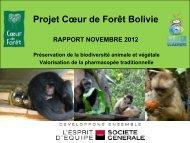 Rapport d'étape - Coeur de Forêt Bolivie - novembre 2012