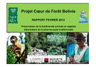 Rapport d'étape - Coeur de Forêt Bolivie - février 2012