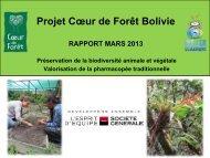 Rapport d'étape - Coeur de Forêt Bolivie - mars 2013