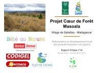 Rapport d'étape n°14 - Coeur de Forêt