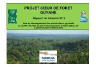 Compte-rendu 1er trimestre 2012 - Projet Coeur de Forêt Guyane