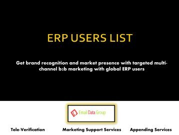 Highly Targeted and Reliable ERP User Lists