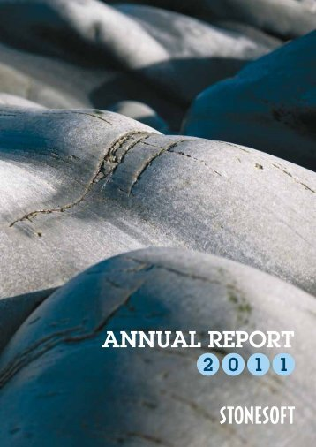 Stonesoft Annual Report 2011